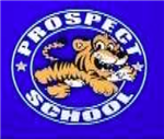 prospect tigers